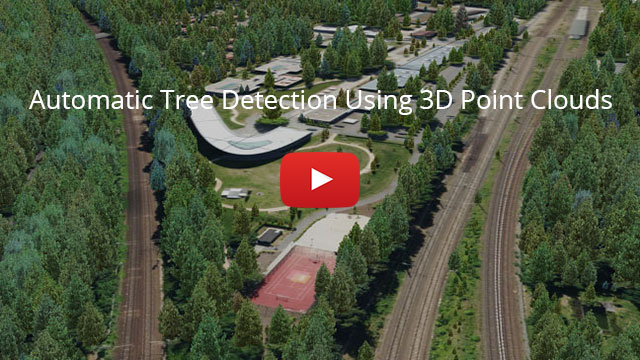 Video: Automatic Tree Detection Using 3D Point Clouds